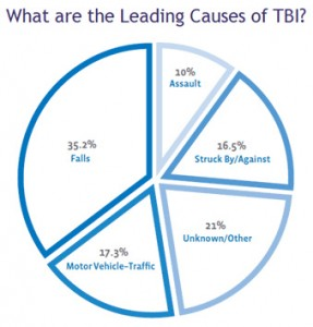 Pie Chart for Traumatic Brain Injury Causes