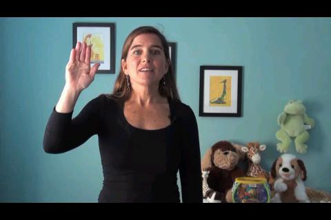Sign Language Fun Learning Screenshot