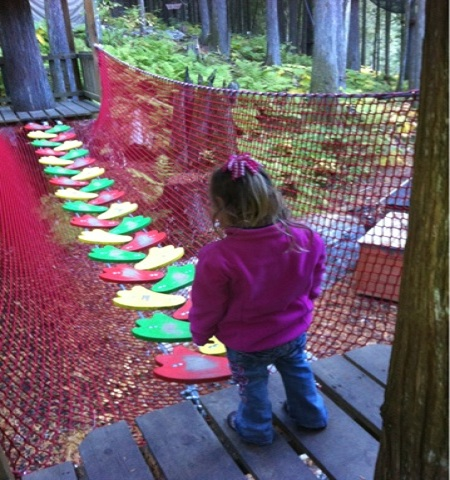 K Navigates an Obstacle Course