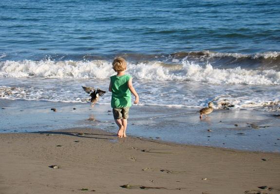 Luke Playing at the Beach