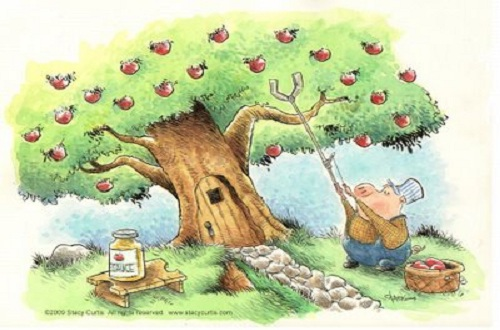 Apple Picking Illustration