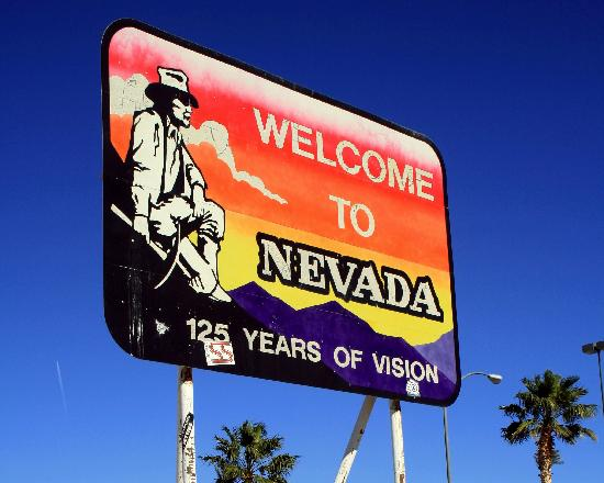 Special Needs Kids in Nevada