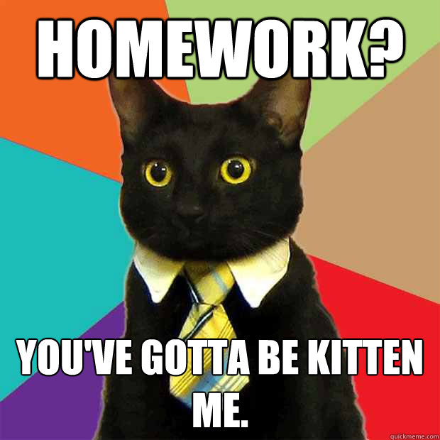 cat talking about homework