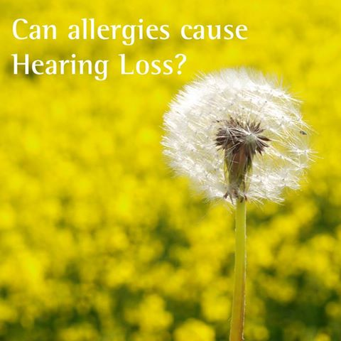 Can allergies cause hearing loss?