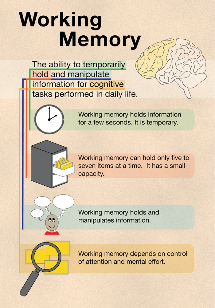 working memory components